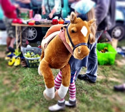 My 'little' pony
