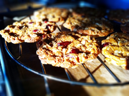 Crispy and chewy cranberry oat biscuits. Perfect with a cuppa of your choice.